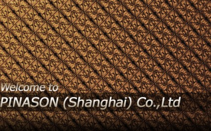 Pinason Shanghai Wafer Process